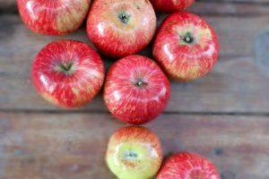 Яблочки наливные. Фото дня.