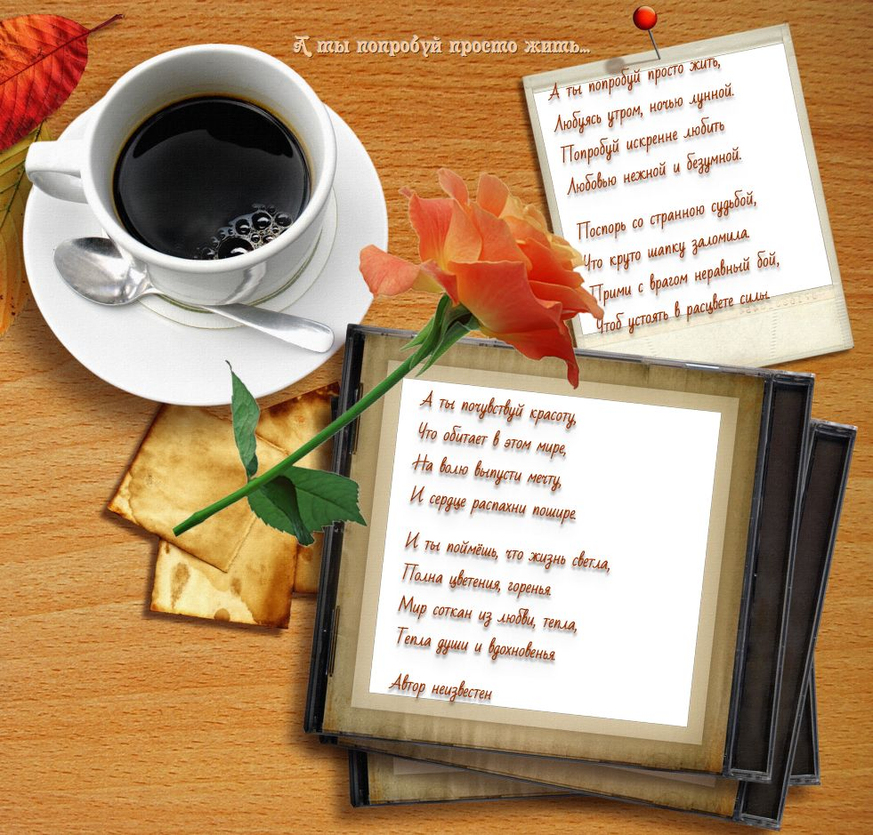 Стихи о жизни - стихи для души.