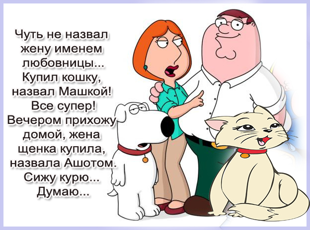 юмор в жизни фото